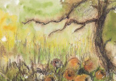 Sam'Crock les pommes ! exposition de croquis exquis ! @ Maison du Parc naturel de Gaume, Château de Rossignol | Tintigny | Wallonie | Belgique