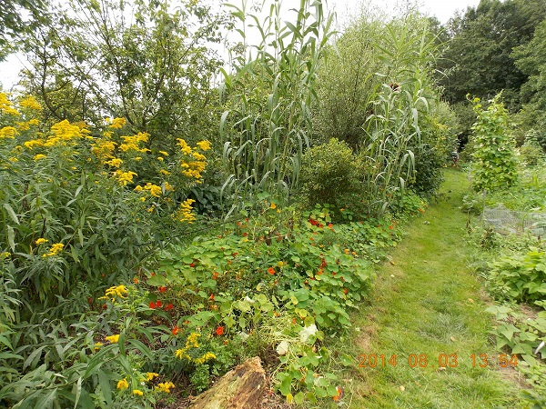 Visite des jardins des Fraternités Ouvrières à Mouscron @ Jardins Fraternités Ouvrières Mouscron